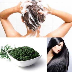 Spiruline pour les cheveux